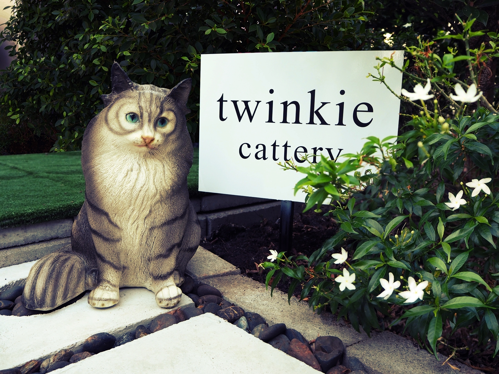 Twinkie's Cattery garden sign